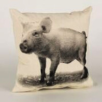 Decorative Pillow, Baby Piglet