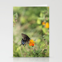 Black Swallowtail In The Garden Stationery Cards by Theresa Campbell D'August Art