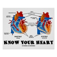 Know Your Heart (Diastole Systole)