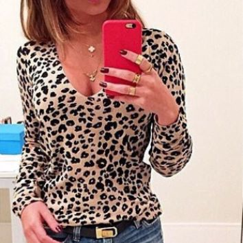 Leopard Print V Neck Knitted Blouse