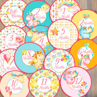 14 Unicorn Pegasus Horse Whimsical Rainbow Gems Hearts Moon Stars Flowers Watercolor Newborn Monthly Milestone Stickers