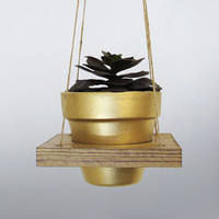 Succulent Planter, Hanging Planter, Air Planter, Hanging Pot, Terracotta Pot, Succulent Holder, Gold Planter, Wood Planter, Succulent Pot