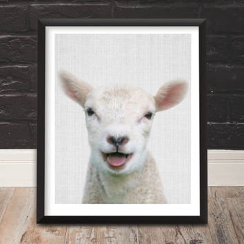 Animal Photography Lamb Download Lamb Wall Hanging Lamb Wall Decor Children Gift Children Decor Children Room Printable Gift Scandinavian