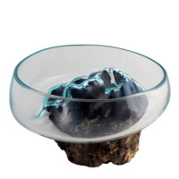 "Medium Hand Blown Molten Glass and Wood Root Sculptured Succulent Bowl Terrarium (9.5""x9.5"")"