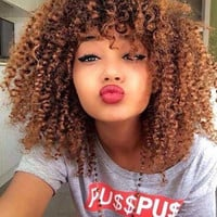 Stylish Towheaded Afro Curly Capless Medium Brown Synthetic Wig For Women