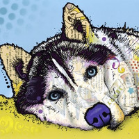 Siberian Husky 2 Poster Print by Dean Russo