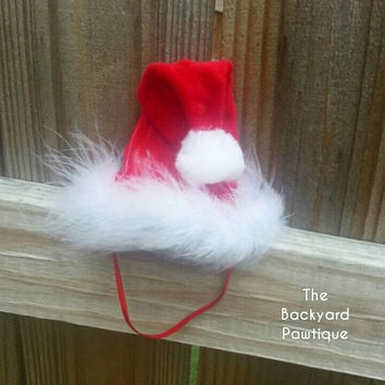 Red Santa Paw-hat, doggie Christmas hat, Christmas,  red,  red and white, holiday, dog, doggie santa hats for christmas