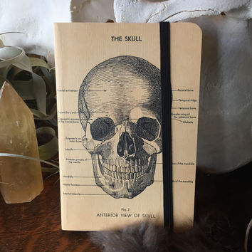 Skull Mini Notebook