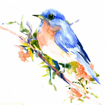 Eastern Bluebird on Spring Tree original one of a kind watercolor painting 10 X 8 in