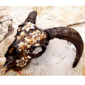Ram Skull with Pyrography, Decorated skull, Sheep skull, Wood burning, ram taxidermy, embellished skull, weird art, bone art, goth decor