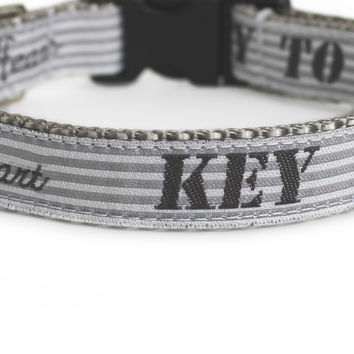 Key to My Heart Dog Collar