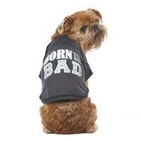 Wag-A-Tude Black Born to be Bad Raw Raglan T Shirt, XXSmall | Petco Store
