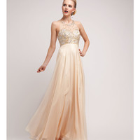 Champagne Satin & Chiffon Beaded Gown
