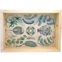Green Sea Serving Wood Tray