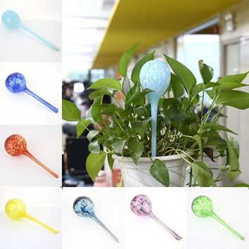 Automatic Watering Devices - Beautiful Glass Globes For Flowers or Bonsai