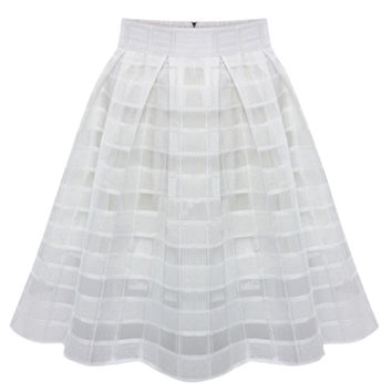 Organza Flared Pleated Skater Skirt