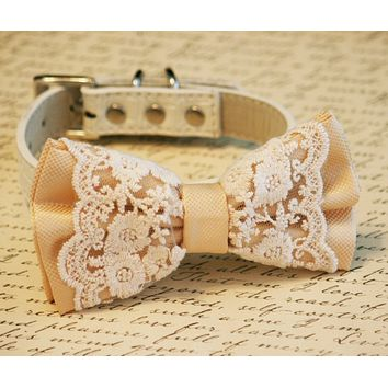 Ivory Lace Dog Bow Tie, Pet wedding, Ivory Wedding