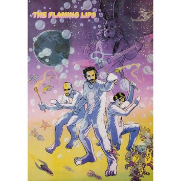 Flaming Lips Domestic Poster