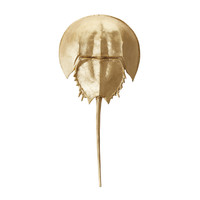 Lazy Susan Gold Mica Horseshoe Crab - 228006