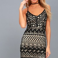 Enchanted Love Black Lace Bodycon Dress