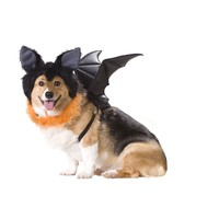 Bat Dog Costume (Medium,Black)