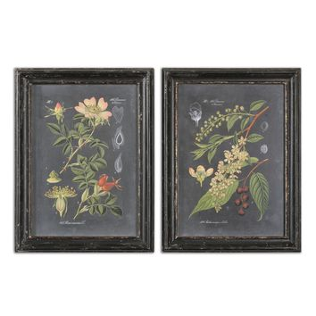 Midnight Botanicals Wall Art - Set of 2 by Uttermost