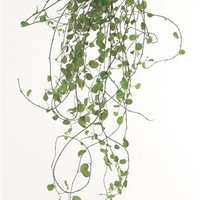 "Preserved Wire Greenery Plants in Green3 Stems per Bunch16-24"" Long"