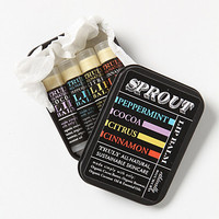 Sprout Lip Balm