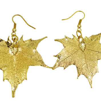 Real Leaf Hook Drop EARRINGS Sugar Maple in 24k Yellow gold Genuine Leaf