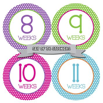 Polkadot Weekly Pregnancy Deluxe Set of 36 Photo Stickers