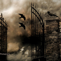 Gothic Gate Architecture Photography, Gothic Spooky Ravens, Surreal Eerie Halloween Gate Photo, Haunting Spooky Gate Raven Photography 8x12