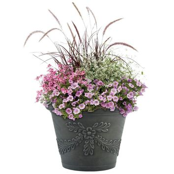 Pride Garden Products 12 in. Garland Charcoal Terrain Planter (2-Pack)-81209 at The Home Depot