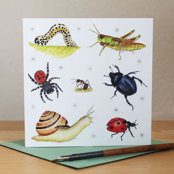 Insect Card, Invertebrates Square Blank Greetings Card, Snail, Grasshopper, Beetle, Spider, Ant, Ladybird, Caterpillar for Birthday Notecard