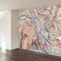 Paul Moore's Rocky Swirls Mural wall decal