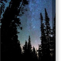 Rocky Mountain Forest Night Canvas Print