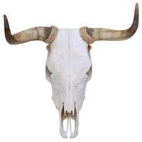 Spanish Fighting Bull Skull Wall Decal