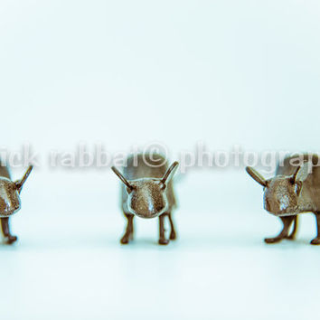 The Three Mice Fine Art Photography Cute Minimalist Macro Children's Room Bathroom Kitchen Office Decor Whimsical Humorous Fun Print