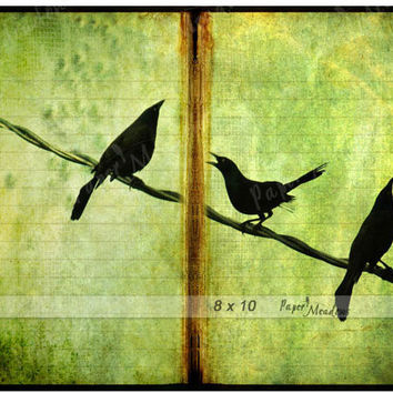 Birds Digital Image Download, 8x10 Collage, Bird Silouettes, Baby Bird in the Middle, Journal Page, scrapbooking & art collages
