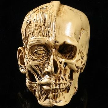Skull Skulls Halloween Fall MRZOOT Resin Craft Art Painting Statues For Model Replica Decoration  Creative Sculpture Home Decoration Accessories Calavera