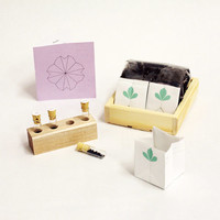Soothing Seed Kit
