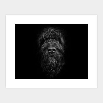Ziggy Portrait No 2 Art Print By Thelearningcurvephotography Design By Humans