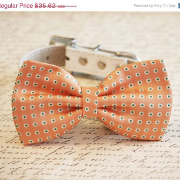 Peach Dog Bow Tie, Pet wedding Accessory, Peach wedding, Peach wedding idea, Dog Lovers