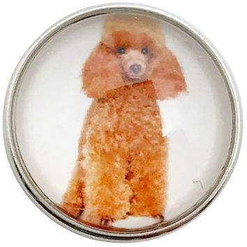 Standard Poodle Dog Snap 20mm for Snap Jewelry