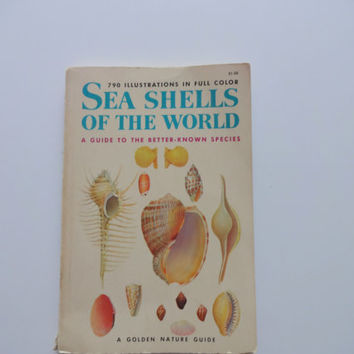Vintage Seashells of the World Golden Nature Guide Book 1962