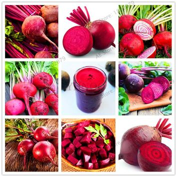 102 pcs/bag Cherry Belle Radish Seeds high quality easy to grow organic seeds vegetables outdoor plant pot for home garden