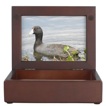 American Coot Bird Wooden Keepsake Box