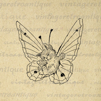 Digital Image Cat Kitten Butterfly Printable Download Graphic Antique Clip Art for Transfers Making Prints etc HQ 300dpi No.1783