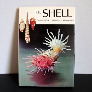 Vintage The Shell: 500 Million Years of Inspired Design, 1973 Reference Book, Hard Cover with Dust Jacket, Color Bookplates & Illustrations