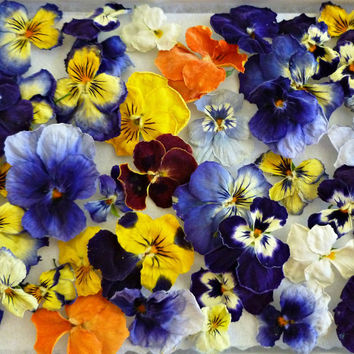 Edible Flowers, Dried Violas, Wedding, Cake Flowers, Salad Sprinkles, Orange Violas, Purple Violas, Lavender, Ivory Violas, Item #0101