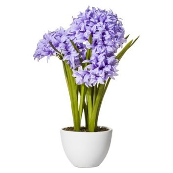 Threshold™ Faux Agapanthus In Glass Pot - 18.5""